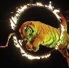 Цирки в Крапивинском